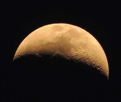 Moon by Karen Horn