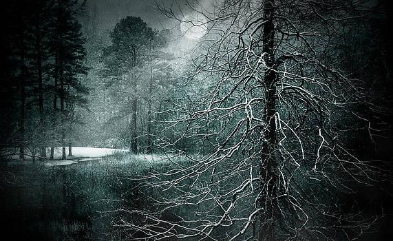 Moon Misty Lake  by Dorothy Walker