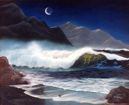 Moon over Surf by Maggie  Cabral