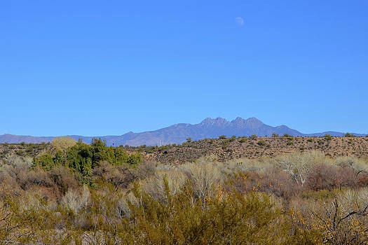 Lynda Lehmann - Moon Over the Four Peaks