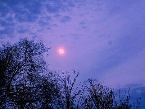 Moon Stuck In Sky by William Madog