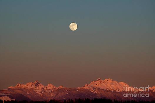 Moon by Sylvia Blaauw