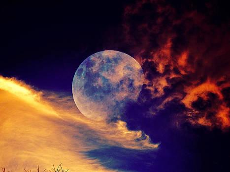 Moon waves by Nicole Champion