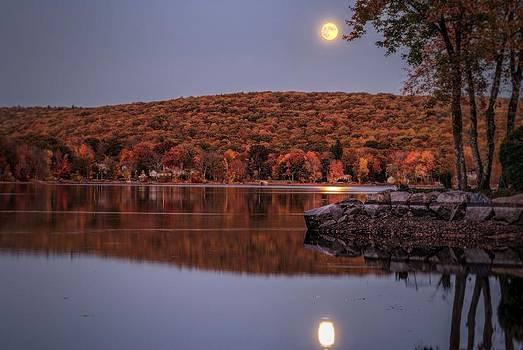 Moondance by Mark Cranston