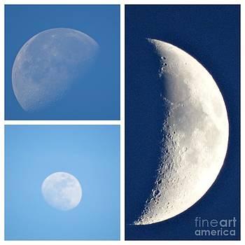 Mooning you  by Linda Xydas