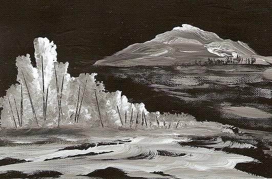 Moonlight Mountain by Ginger Lovellette