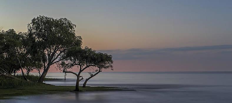 Moonlit Landscape by Alfredo Rougouski