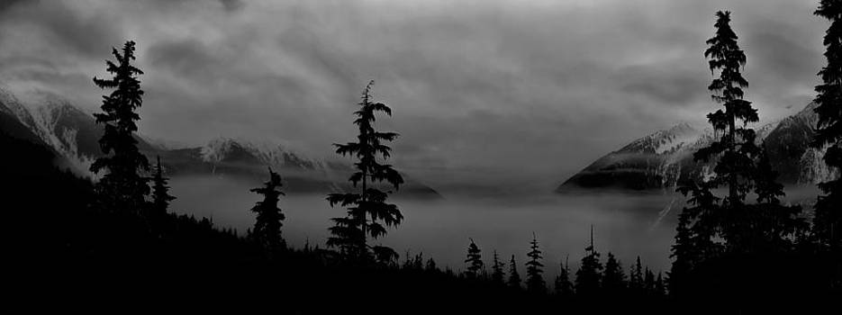 Moonlit Mist Black and White by Lisa Hufnagel
