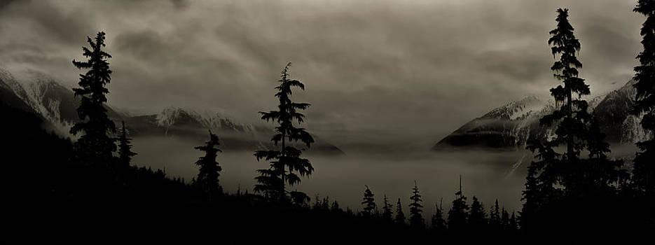 Moonlit Mist by Lisa Hufnagel