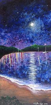 Moonlit by Naeema Bacchus