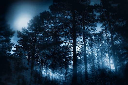 Moonlit Night by Douglas MooreZart