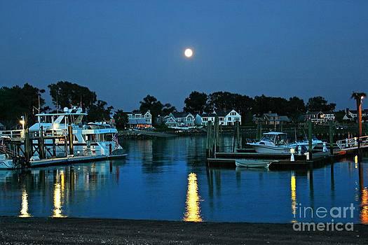 Moonlit Waters - Super Moon 2014 by Judy Palkimas