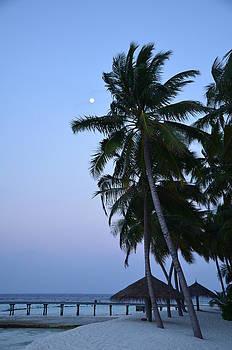 Corinne Rhode - Moonrise in Maldives