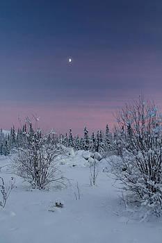 Moonrise by Valerie Pond