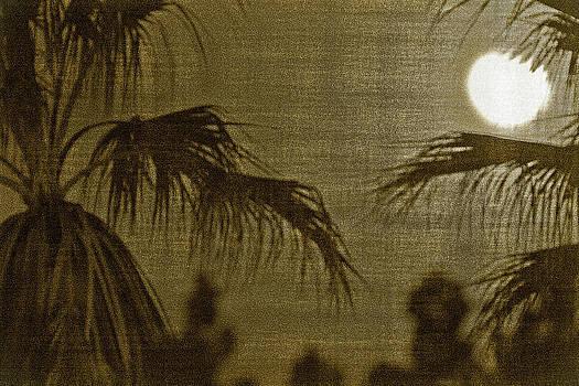 Gilbert Artiaga - Moons Glow