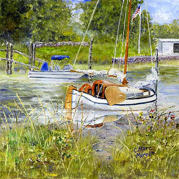 Moored in Wickford Cove by C Marc Morelle