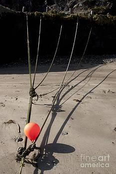 Mooring Rope 4 by Paul Felix