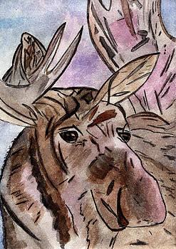 Moose at Sunset by Elizabeth Briggs