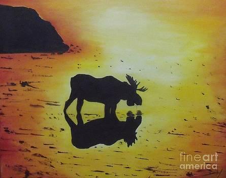 Moose in the Sunset by Debra Piro