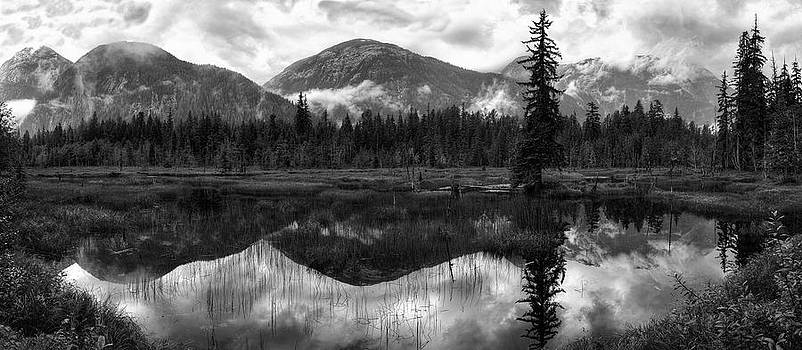 Moose Pond Panorama in Black and White by Lisa Hufnagel