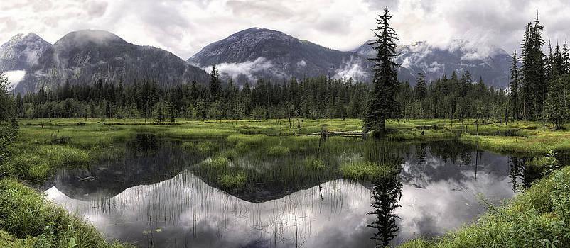 Moose Pond Panorama by Lisa Hufnagel