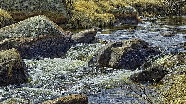Moraine Park by Tom Wilbert