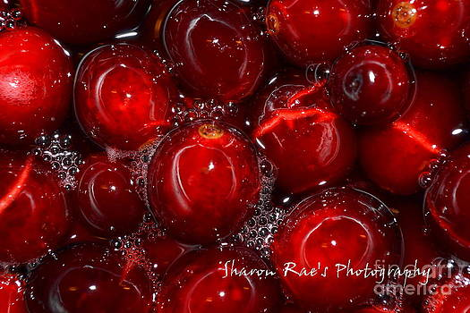 More Berries to You by Sharon Farris