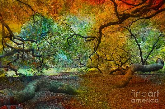 More Colors by Kathleen Struckle