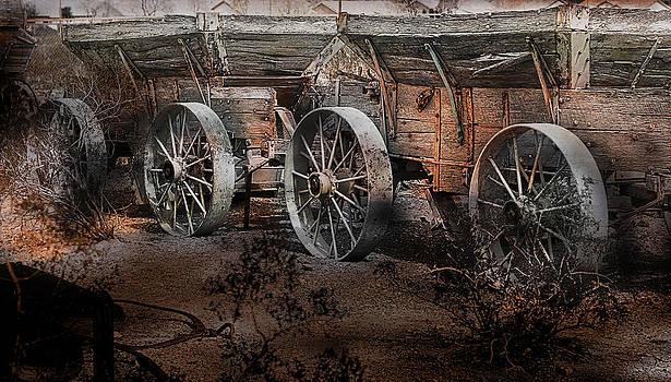 Gunter Nezhoda - More Wagons East