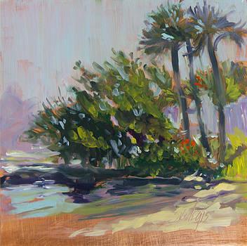 Morning Breeze by Sheila Wedegis