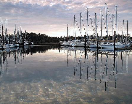 Charleston Basin Morning by Suzy Piatt