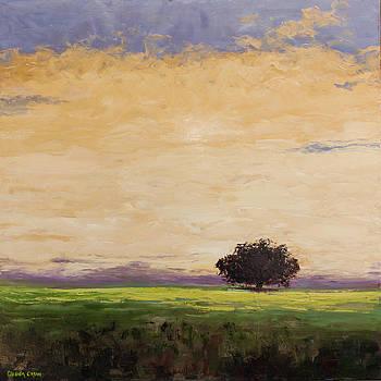Morning Clouds by Glenda Cason