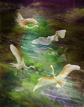 Morning Fishing by Melinda Hughes-Berland