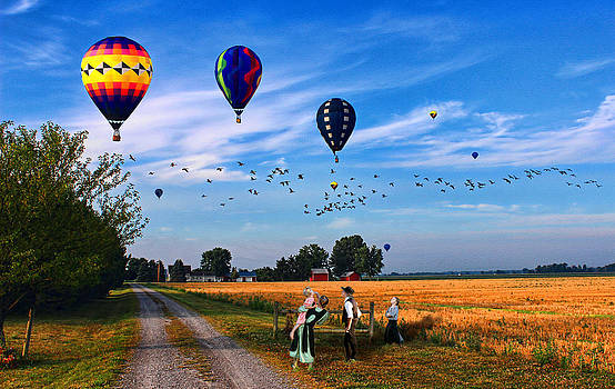 Morning Flight by Tom Schmidt
