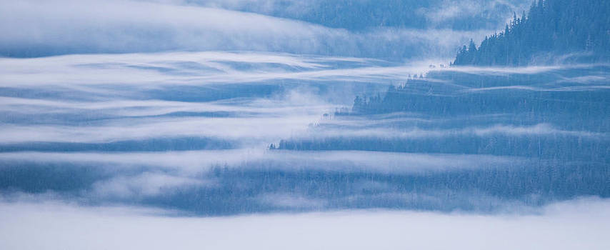 Morning Fog On The Hillsides by Michael Melford