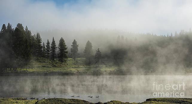 Sandra Bronstein - Morning Fog on the Yellowstone