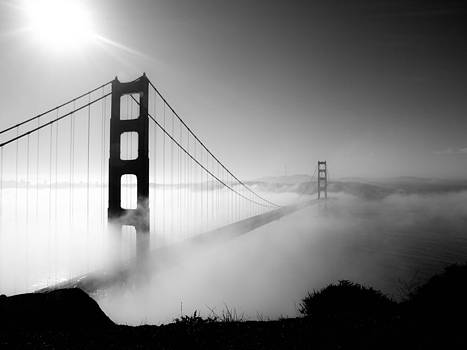 Morning Fog by Valeria Donaldson