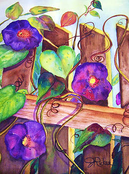 Morning Glory On The Fence by Jane Ricker