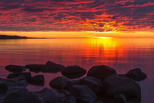 Mary Amerman - Morning Glow