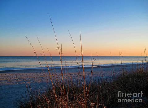 Susanne Van Hulst - Morning has broken at Myrtle Beach South Carolina