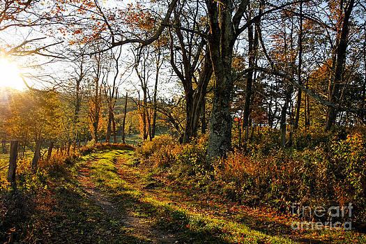Dan Carmichael - Morning Light in the Blue Ridge