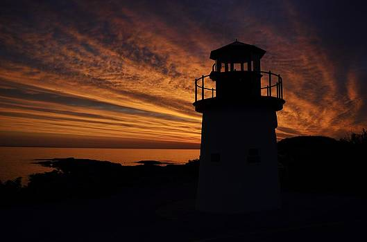 Joy Bradley - Morning Light