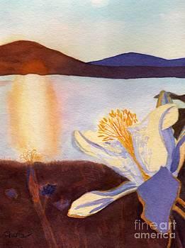 Morning Mesa Columbine by Vikki Wicks