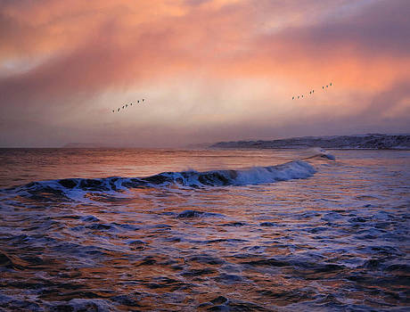 Morning on the coast by Roy  McPeak