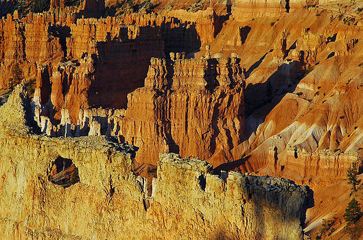 Morning Oranges and Shadows in Bryce Canyon by Bruce Gourley