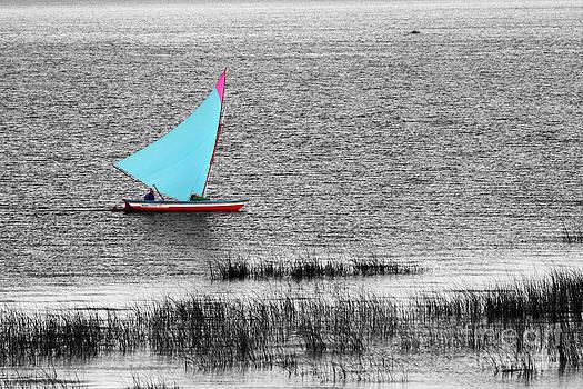 James Brunker - Morning Sail