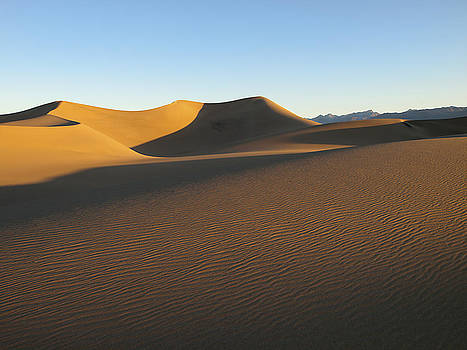 Morning Shadows. The Mesquite Dunes, Death Valley National Park.  by Joe Schofield