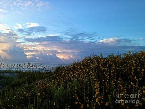 Morning Sky by Enid Gough
