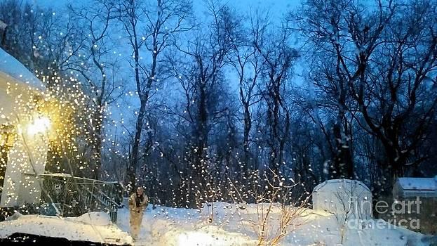 Snowy Morning by Rose Wang