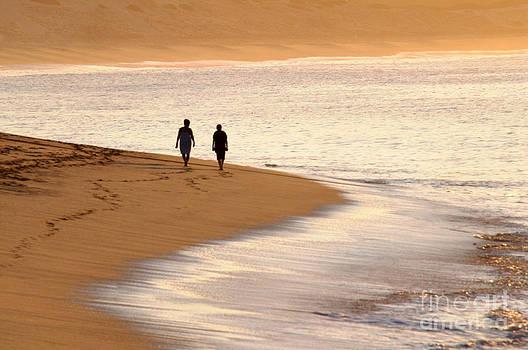 Morning Stroll by Dan Holm